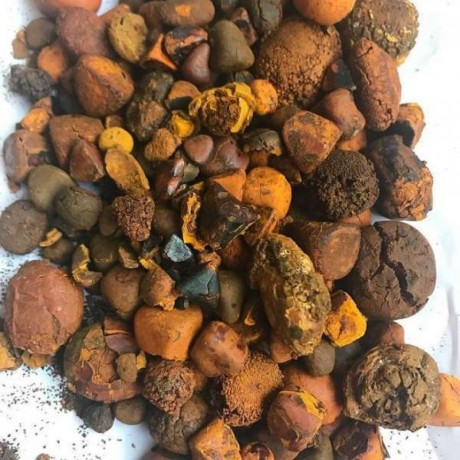 quality-cattle-gallstones-big-0