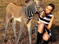 outstanding-zebras-for-sale-small-1